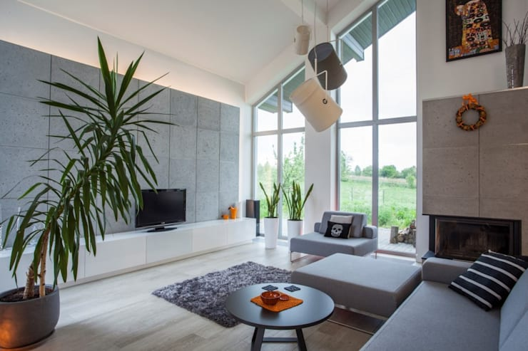 Living room by Kunkiewicz Architekci