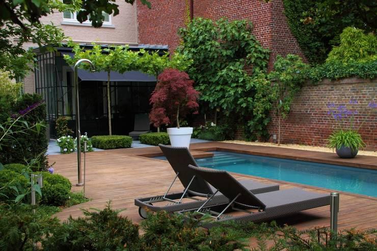 Bamboe decking bij inloopzwembad:  Tuin door Hoveniersbedrijf Guy Wolfs