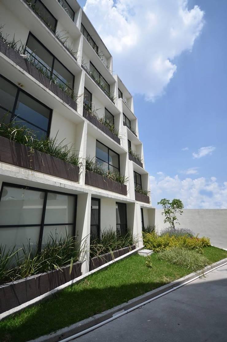 Privalia Sur:  de estilo  por PABELLON de Arquitectura