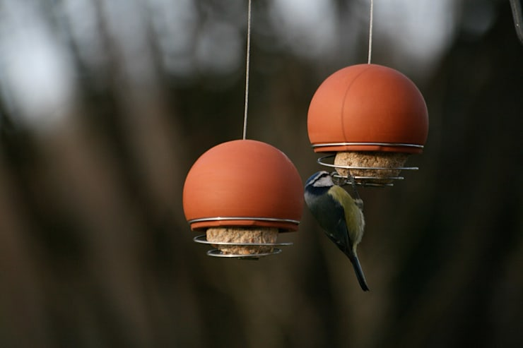 Birdball Belle Feeder:  Garden  by Green & Blue