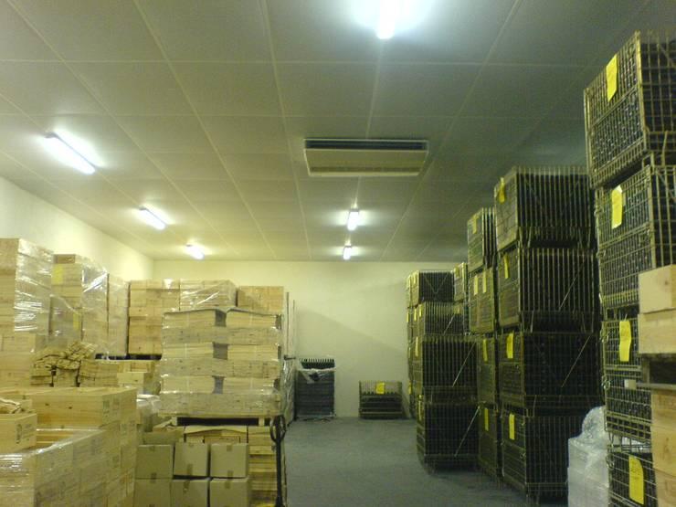 local stockage: Cave à vin de style de style eclectique par SAS ACCTIF DESIGN