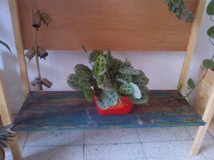 Mueble verde: Hogar de estilo  por Departamento Seis