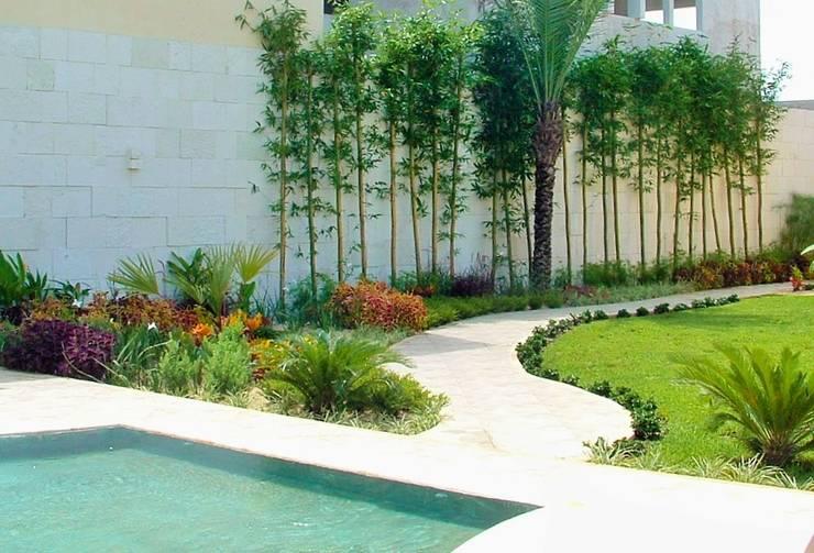 CASA WKT: Jardines de estilo  por EcoEntorno Paisajismo Urbano