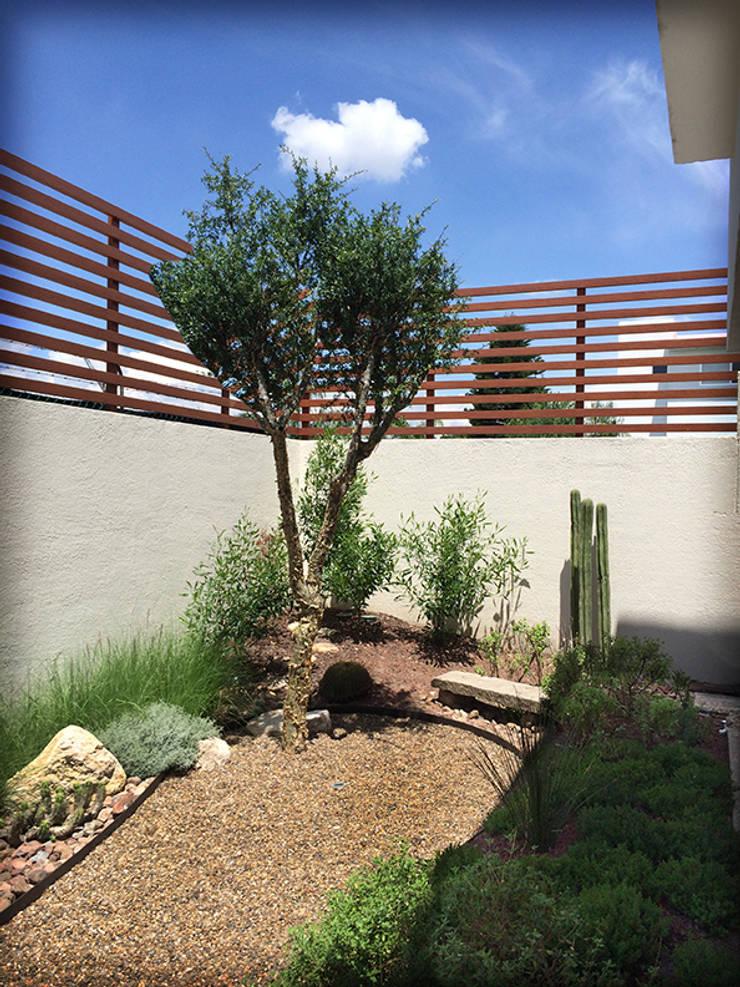 Jardín Nativo en el Campestre, Qro.: Jardines de piedra de estilo  por Hábitas