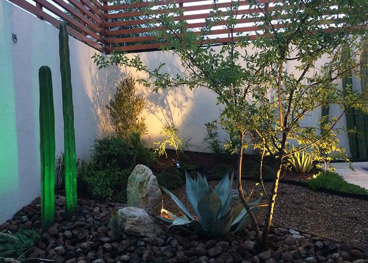 Vista de la parte poniente desde el cuarto de TV.: Jardines de piedra de estilo  por Hábitas