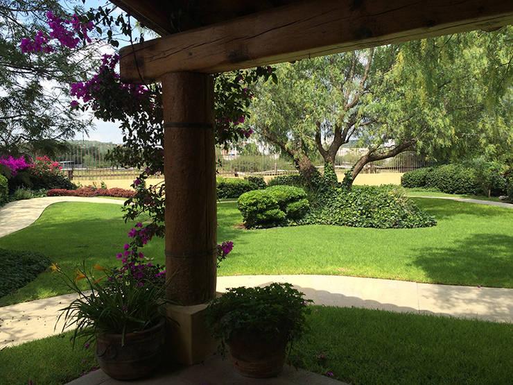Olivos 611, Jurica, Querétaro: Jardines de estilo  por Hábitas