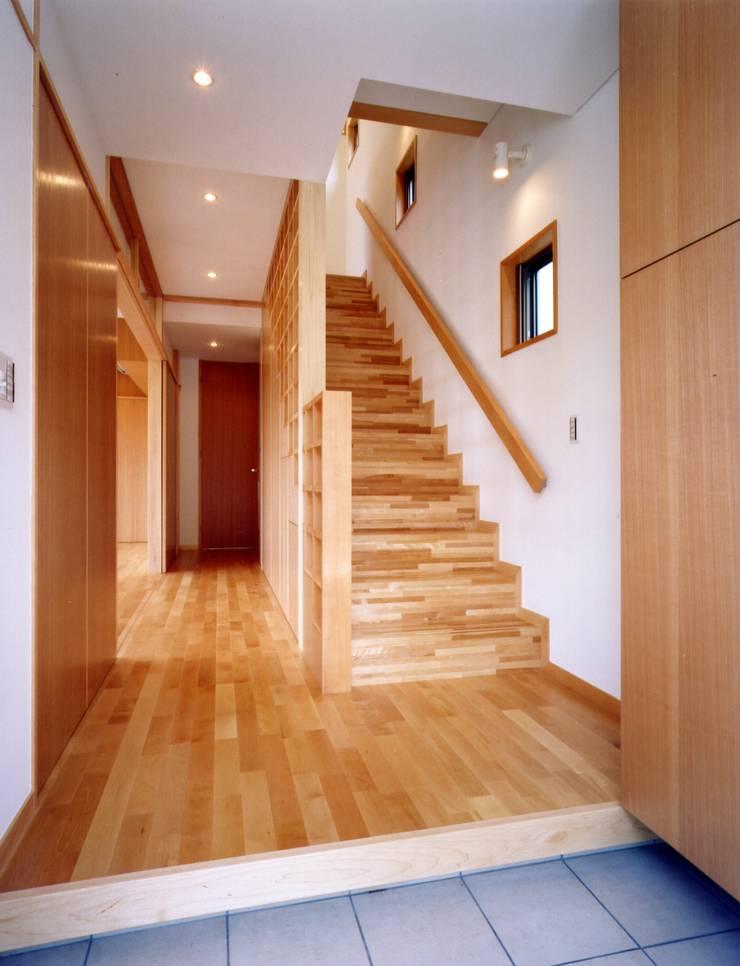 麦畑のある家 モダンスタイルの 玄関&廊下&階段 の 池野健建築設計室 モダン 木 木目調