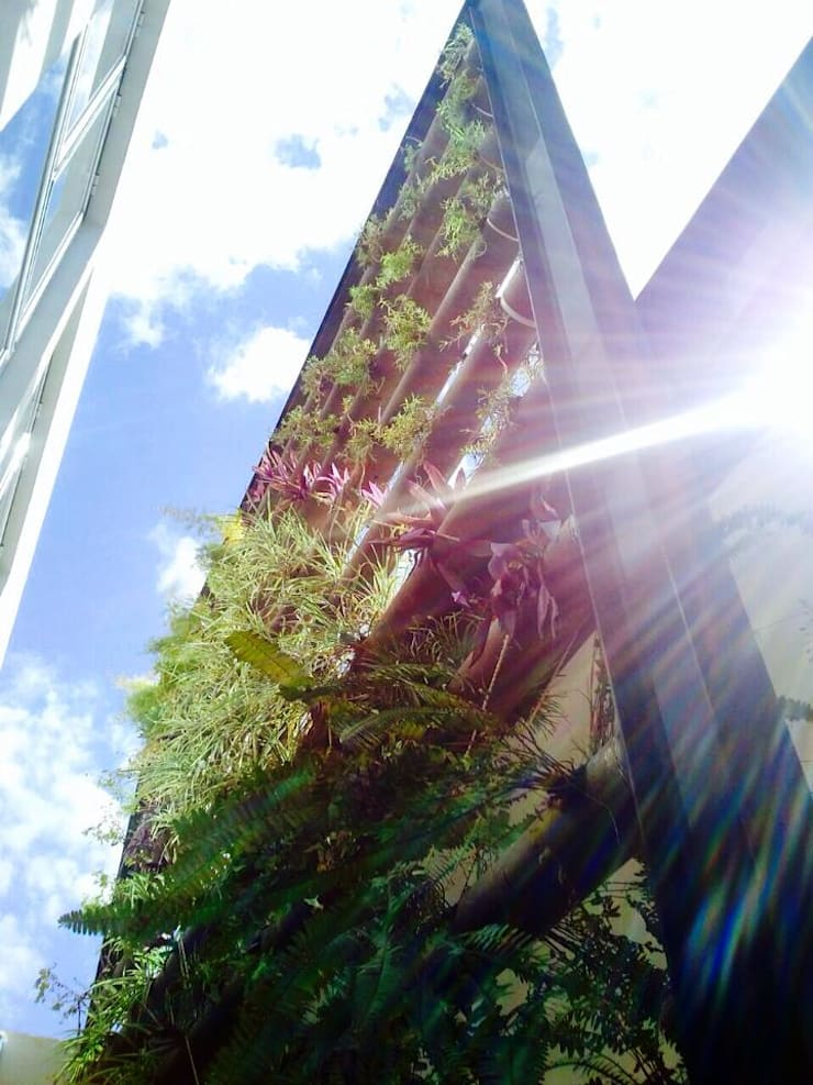 Bambootec : Jardines de estilo  por Bambootec