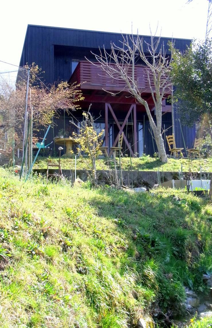 見上げ、外観。: 酒井光憲・環境建築設計工房が手掛けた家です。,オリジナル 木 木目調