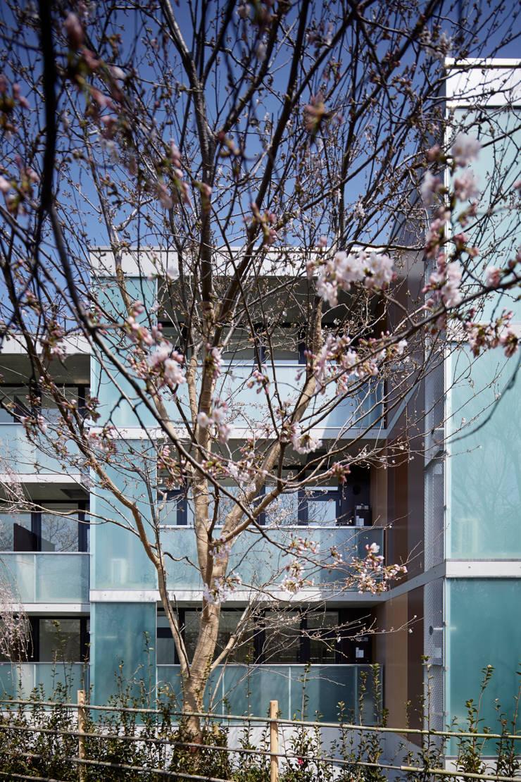 プラザレジデンス9: 片岡直樹設備設計一級建築士事務所が手掛けた家です。