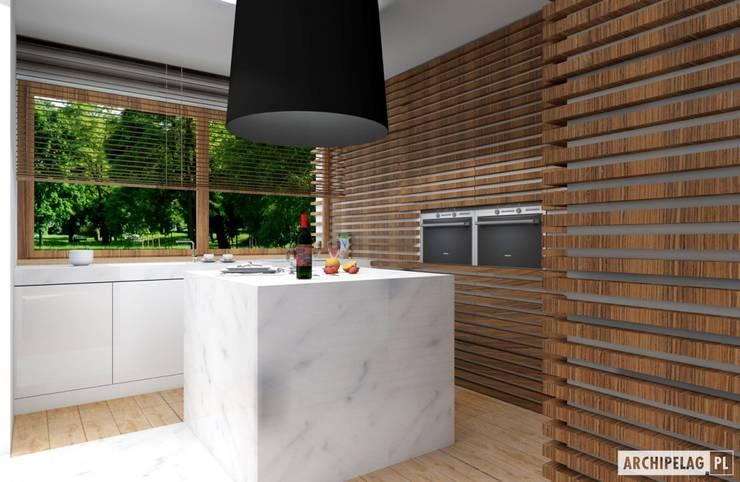Projekt domu EX 3 G1 | kuchnia : styl , w kategorii Kuchnia zaprojektowany przez Pracownia Projektowa ARCHIPELAG