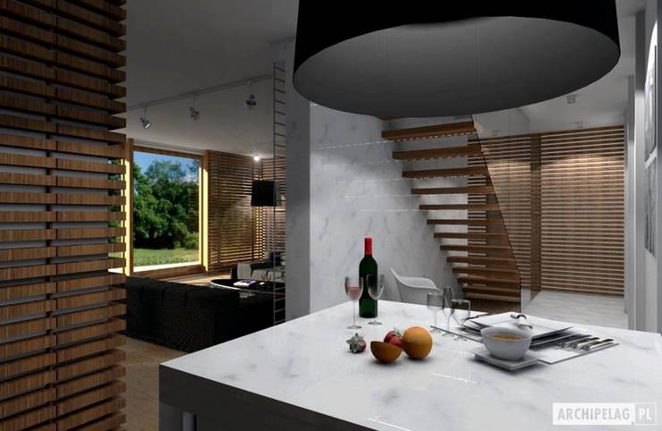 Projekt domu EX 3 G1 | kuchnia : styl , w kategorii Kuchnia zaprojektowany przez Pracownia Projektowa ARCHIPELAG,Nowoczesny