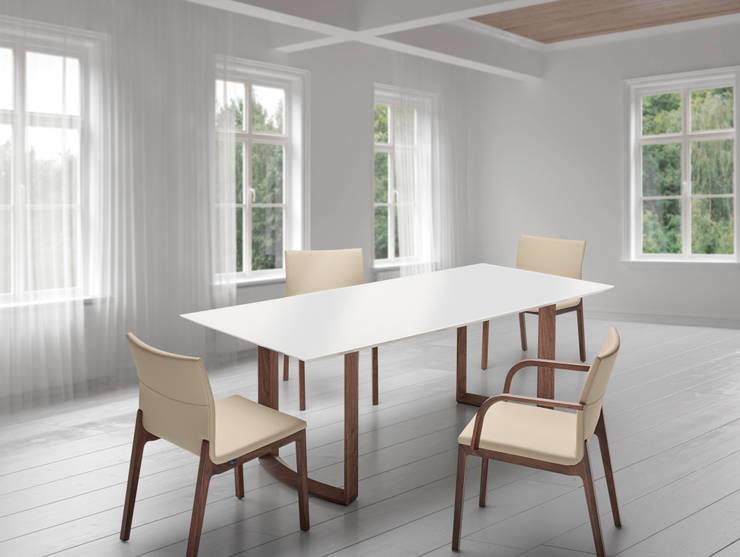 Modern Dining Room By Bacher Tische M. U0026 W. Bacher GmbH