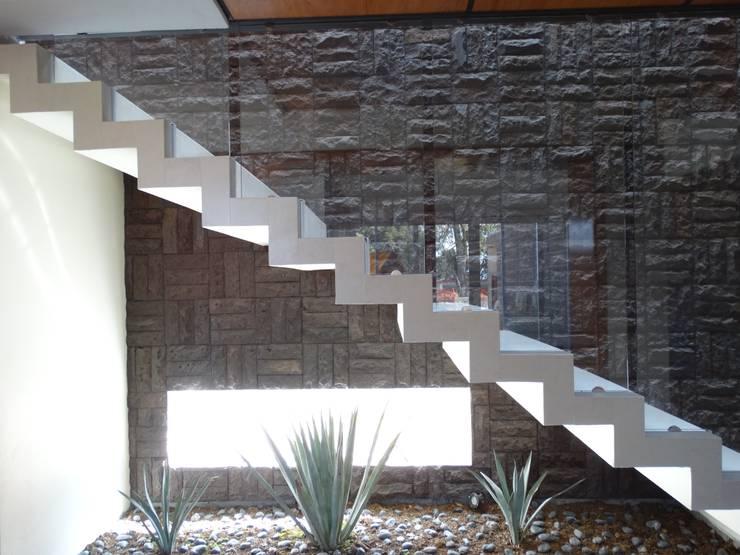 Proyecto Casa Moll : Pasillos y recibidores de estilo  por Home & House Studio