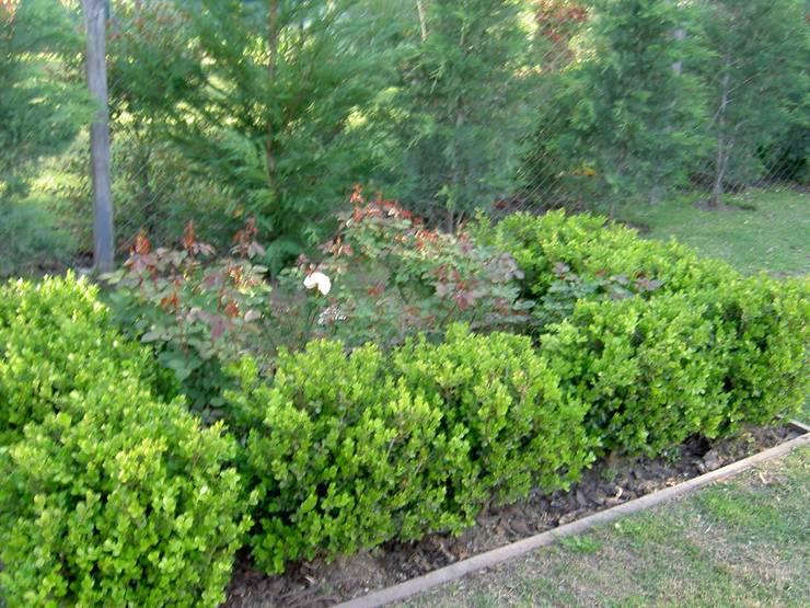 สวน โดย BAIRES GREEN, คลาสสิค