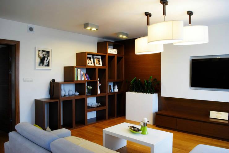 Projekt wnętrza pod Łodzią: styl , w kategorii Salon zaprojektowany przez Projektowanie wnętrz Berenika Szewczyk,Nowoczesny