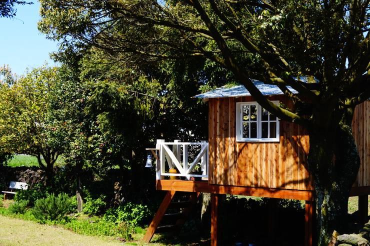 트리하우스 : studio13 의  주택,모던