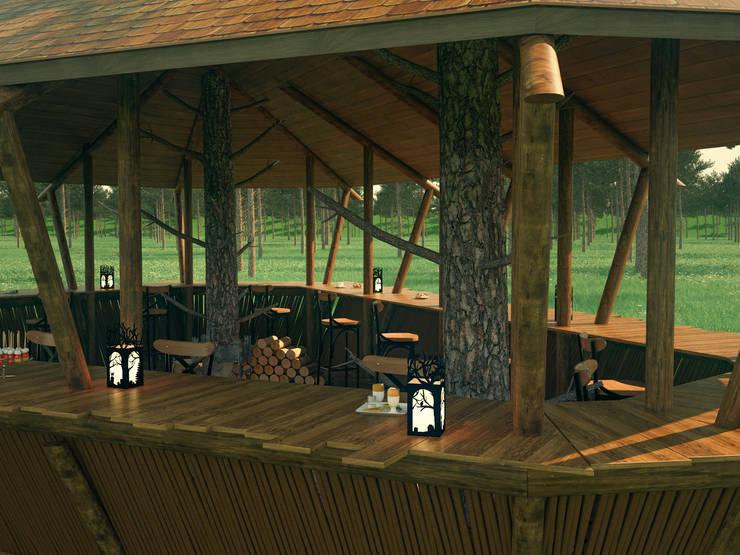 Необычный проект кафе, экстерьер: Дома в . Автор – Катков Сергей
