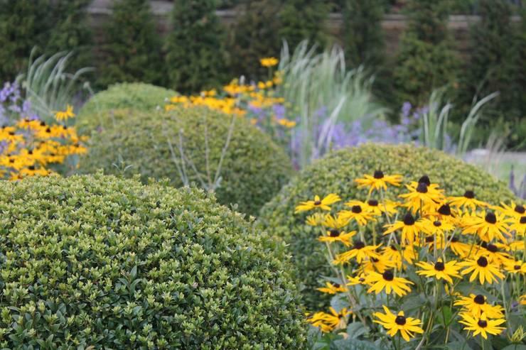 Garden by Bestall & Co Landscape Design Ltd