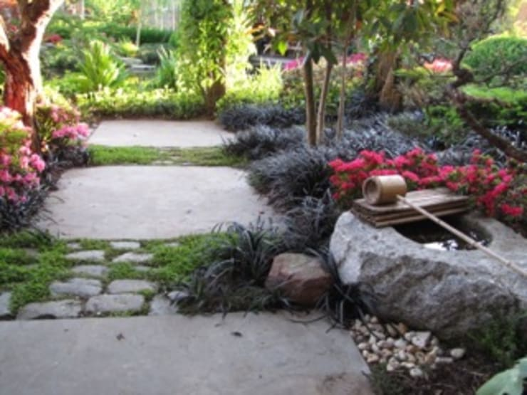 Jardines de estilo  por Bouwhuis en Tuin hoveniersbedrijf, Asiático