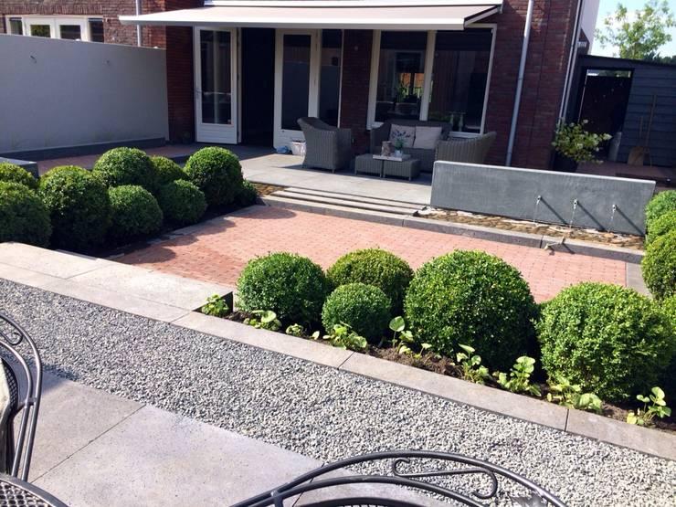 Hoveniersbedrijf Tim Kokが手掛けた庭