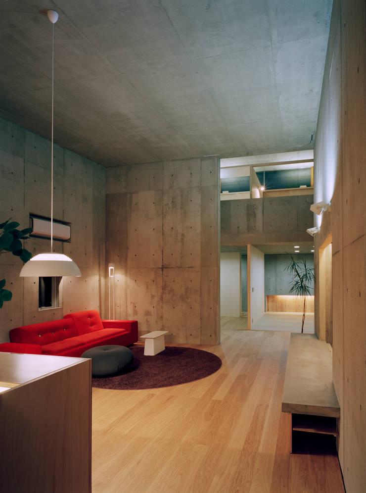 下小鳥の家: 桐山和広建築設計事務所が手掛けたリビングです。