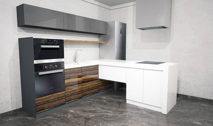 Проект кухни к помещению заказчика в стиле Лофт: Кухня в . Автор – MARIA MELNICOVA студия SIERRA,