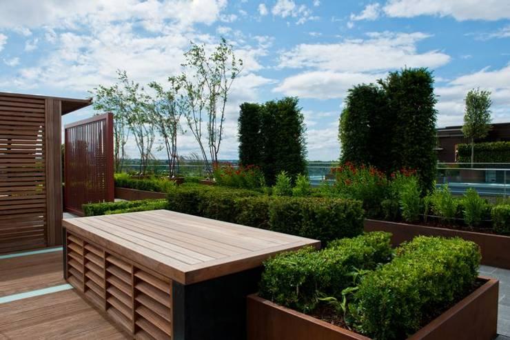 庭院 by Aralia