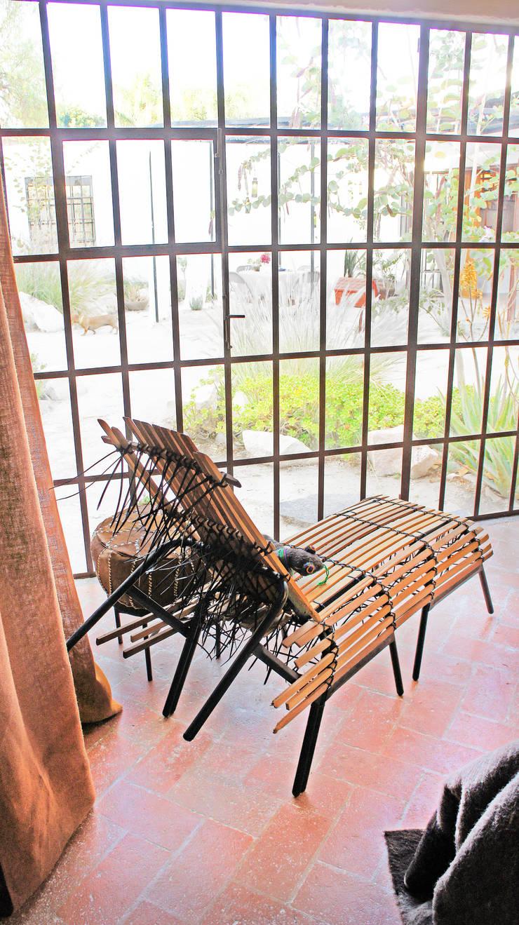 Casa Clemente: Salas de estilo  por Juan Carlos Loyo Arquitectura