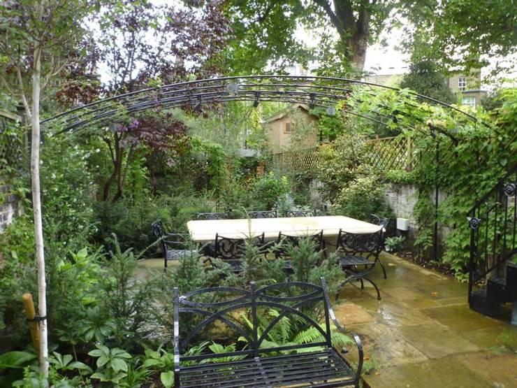Regent's Park House - Aralia Garden Design:  Garden by Aralia
