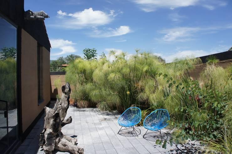 Casa Estudio Sabinos: Jardines de estilo  por Juan Carlos Loyo Arquitectura