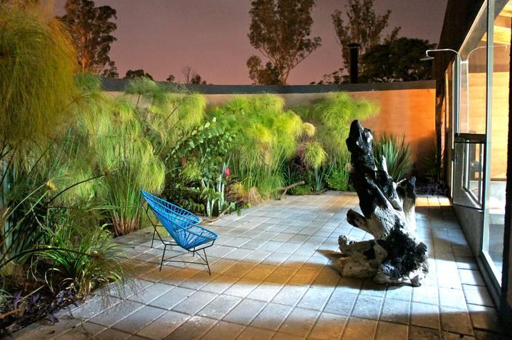 Casa Estudio Sabinos: Terrazas de estilo  por Juan Carlos Loyo Arquitectura