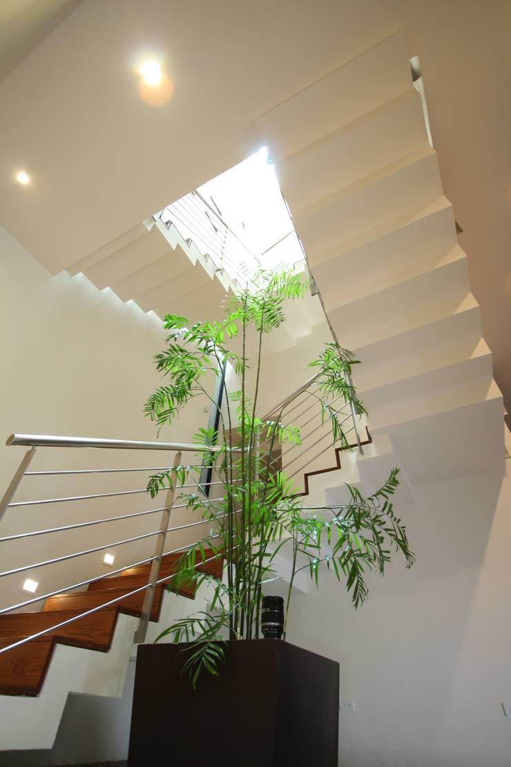 Escaleras: Pasillos y recibidores de estilo  por ODICSA