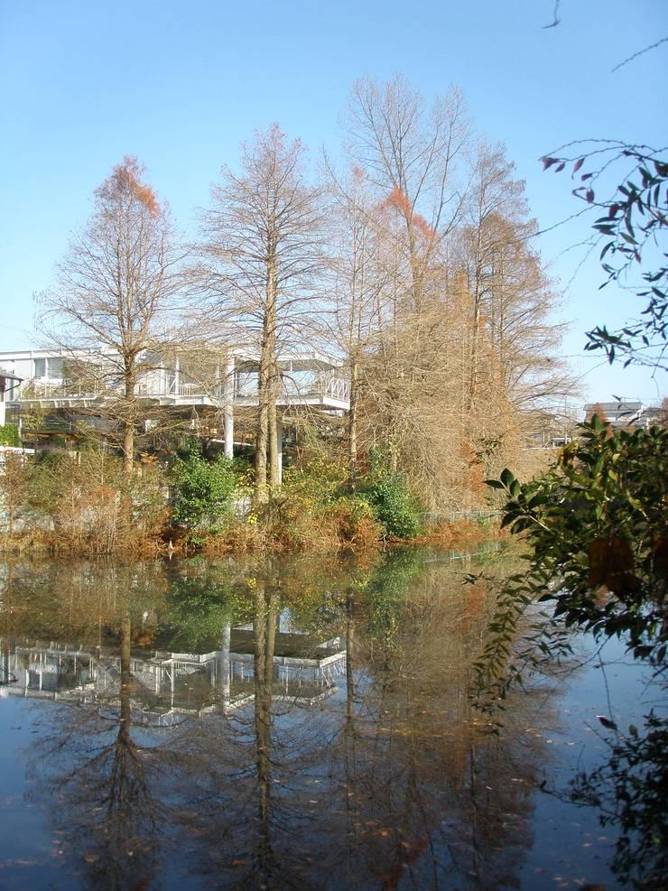 建築家の自邸 Architect's own house: 高原生樹建築設計事務所が手掛けた家です。