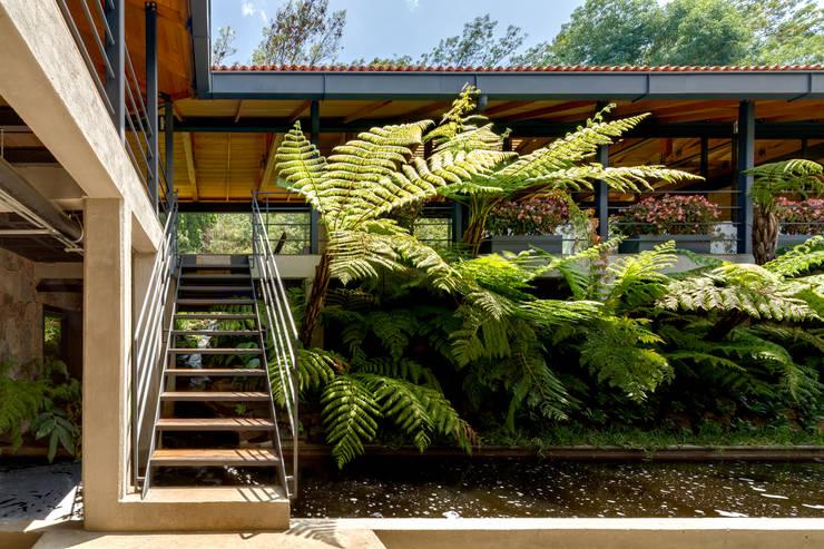 現代風玄關、走廊與階梯 根據 TAAR / TALLER DE ARQUITECTURA DE ALTO RENDIMIENTO 現代風