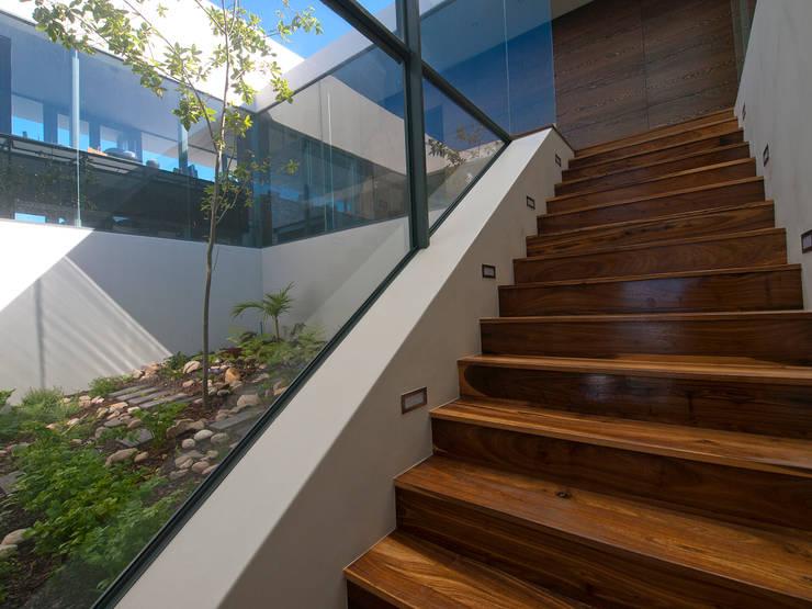 Corridor & hallway by van ringen architecten