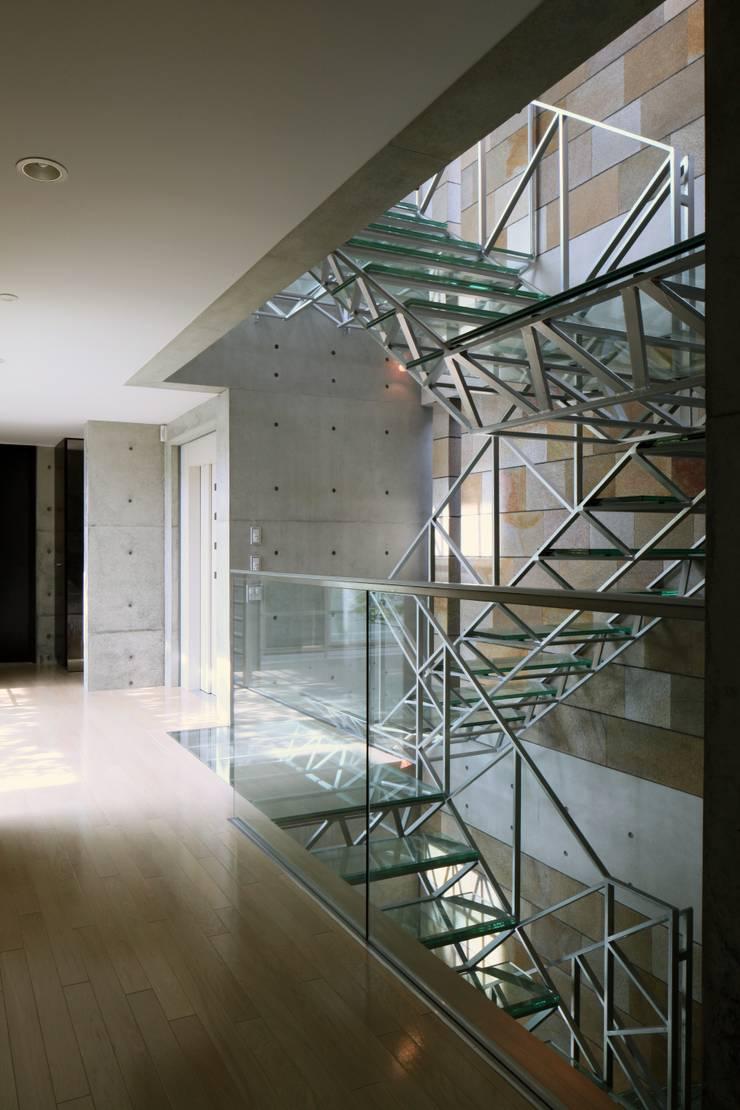 二段テラスの家: AMO設計事務所が手掛けた廊下 & 玄関です。