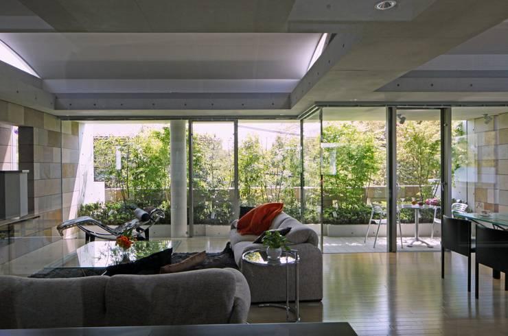 二段テラスの家: AMO設計事務所が手掛けたリビングです。