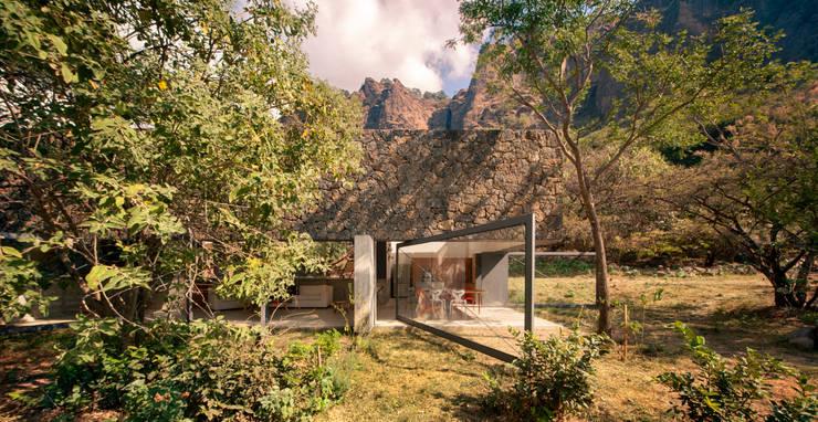 Casa Meztitla: Jardines de estilo  por EDAA | Estrategias para el Desarrollo de Arquitectura
