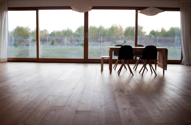Projekty domów - House 27.1: styl , w kategorii Salon zaprojektowany przez Majchrzak Pracownia Projektowa,