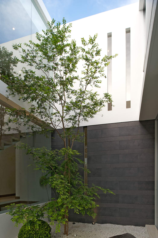 Casa Koz: Jardines de estilo  por Tacher Arquitectos