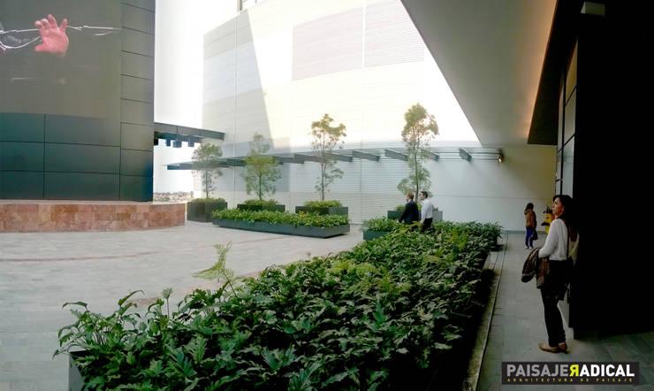 Terraza: Jardines de estilo  por Paisaje Radical