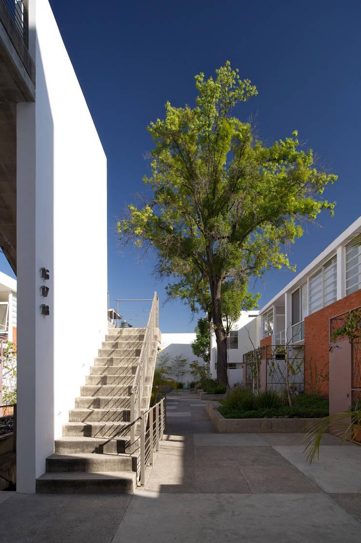 LA MOJADA: Casas de estilo  por Trama Arquitectos