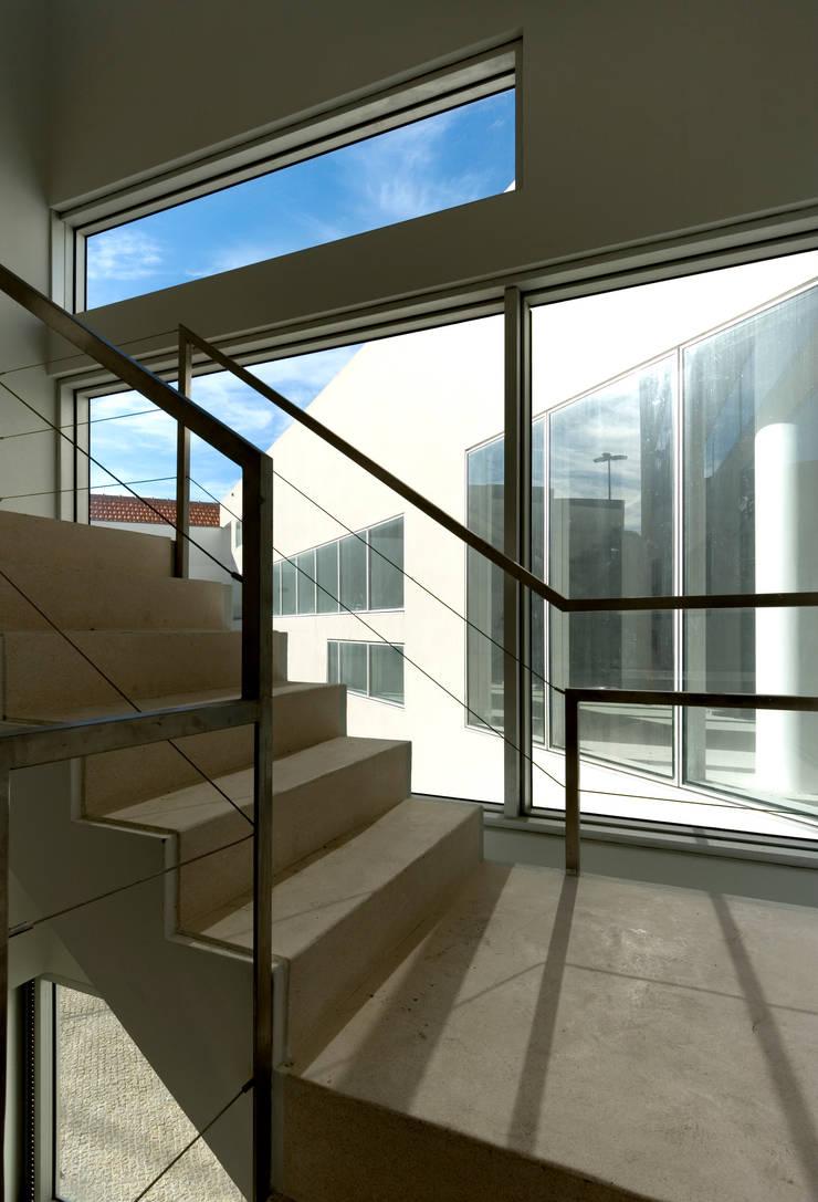 Escadas: Corredores e halls de entrada  por MANUEL CORREIA FERNANDES, ARQUITECTO E ASSOCIADOS
