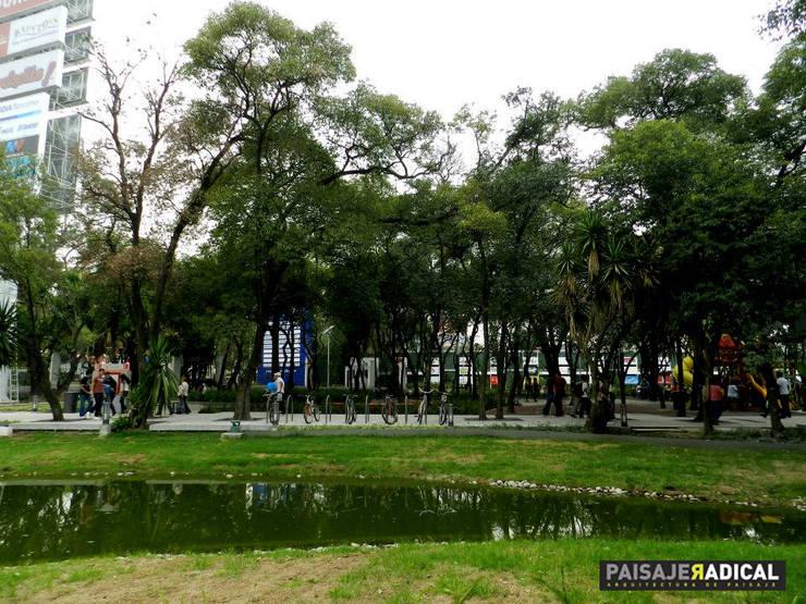 TOWN CENTER: Jardines de estilo  por Paisaje Radical