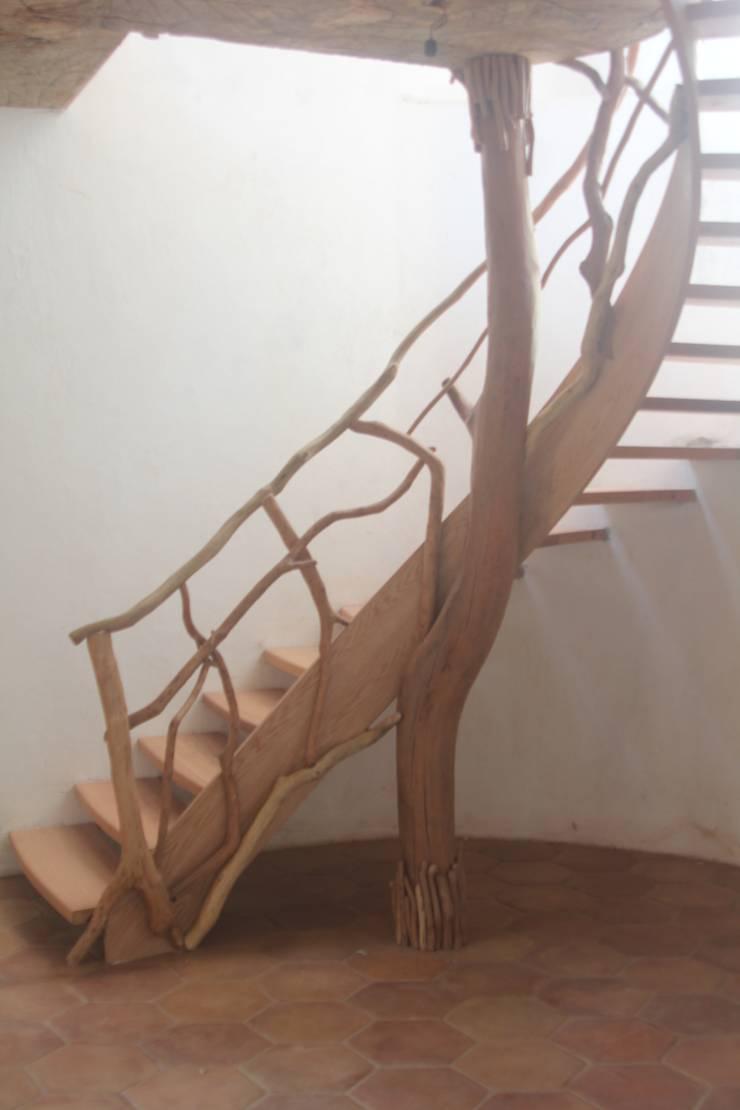 Escalera encino y guayabo: Pasillos y recibidores de estilo  por L atelier