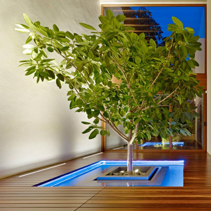 Paisajismo de interiores de estilo  por VICTORIA PLASENCIA INTERIORISMO