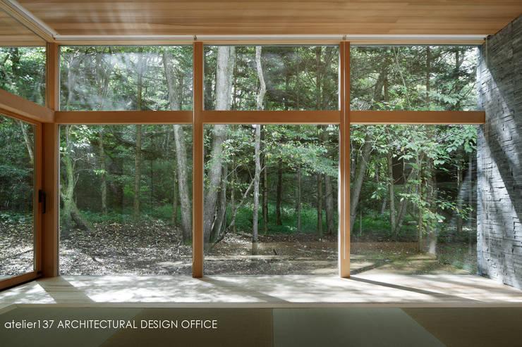 040軽井沢Cさんの家(増築): atelier137 ARCHITECTURAL DESIGN OFFICEが手掛けたリビングです。