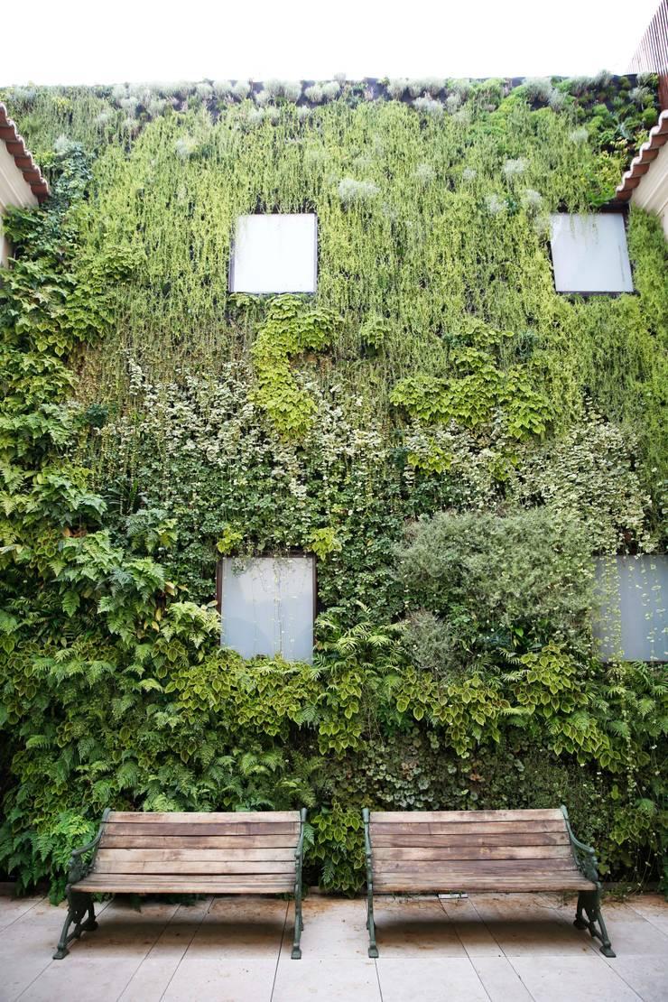 Santiago de Alfama * (Boutique Hotel) - Rua de Santiago 10 a 14, 1100-494 Lisboa: Hotéis  por LC Vertical Gardens