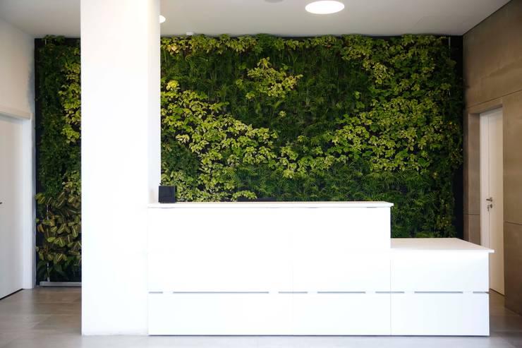 Paladin * Zona Industrial Lote 6 Golegã - Portugal: Escritórios  por LC Vertical Gardens